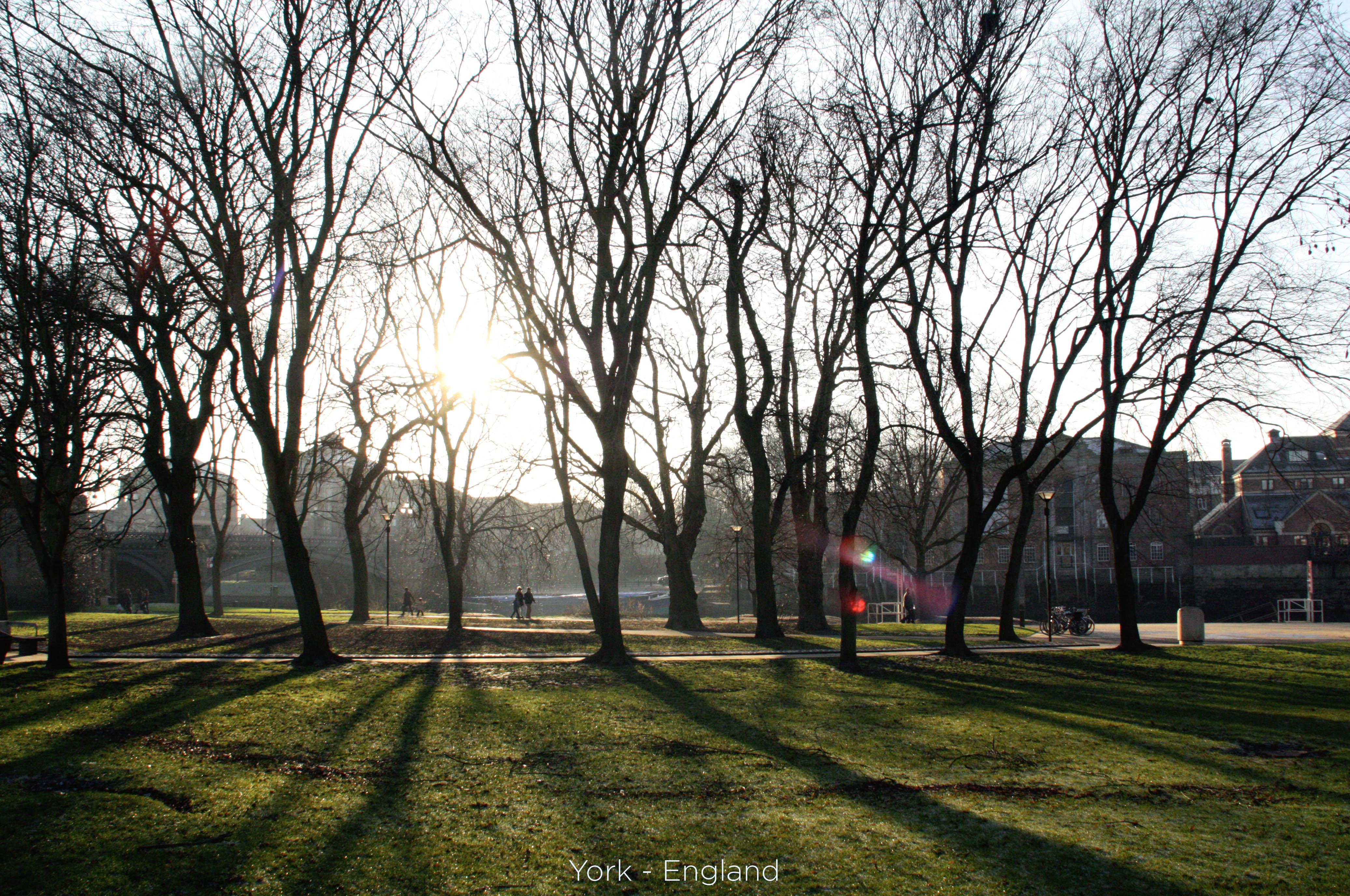 york park